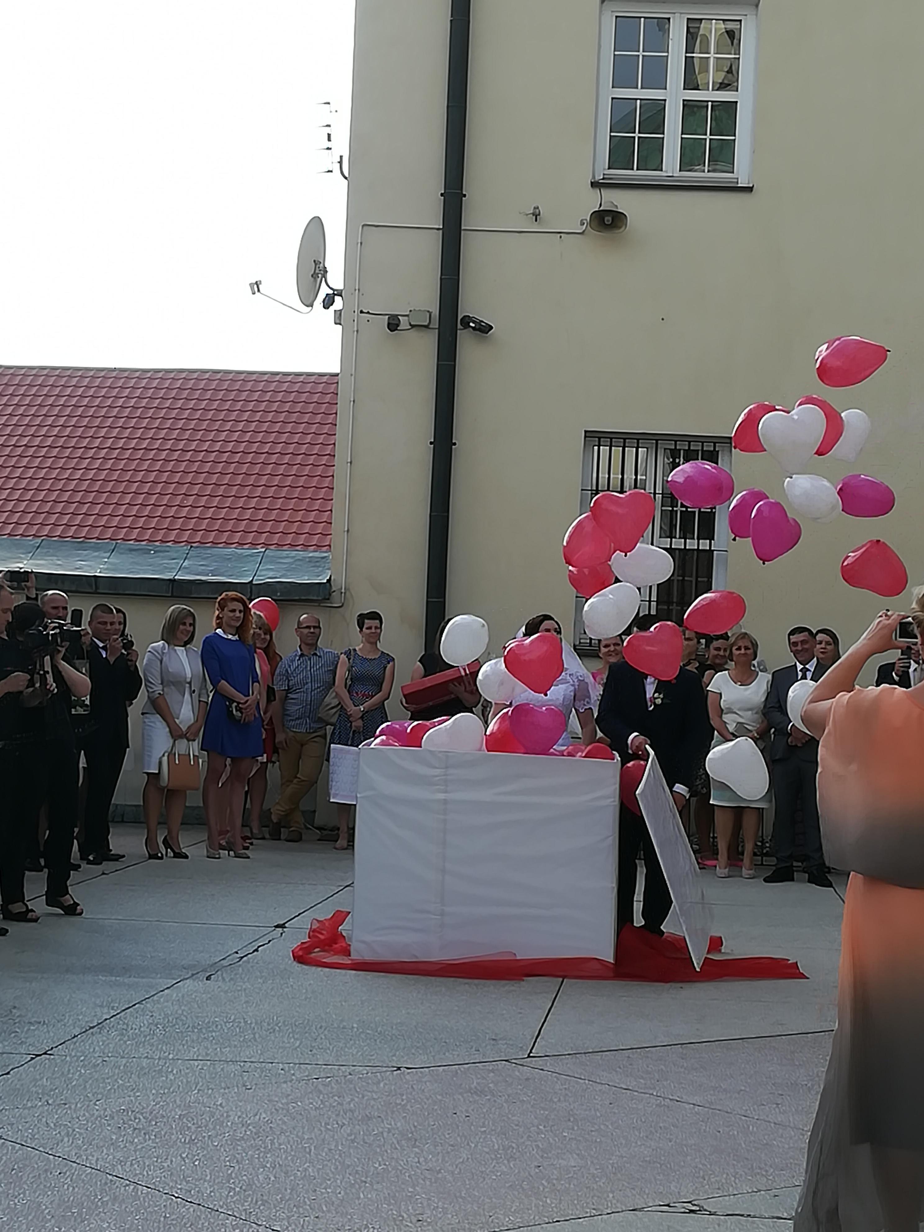 Dekoracje Z Balonów Brama Z Balonów Girlanda Z Balonów
